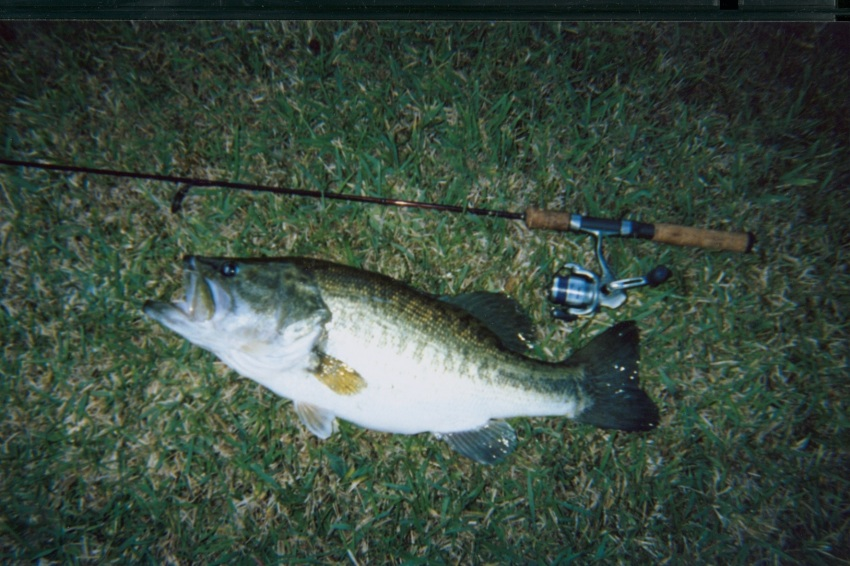 August 2012 bucket list fishing for Bass fish slippers