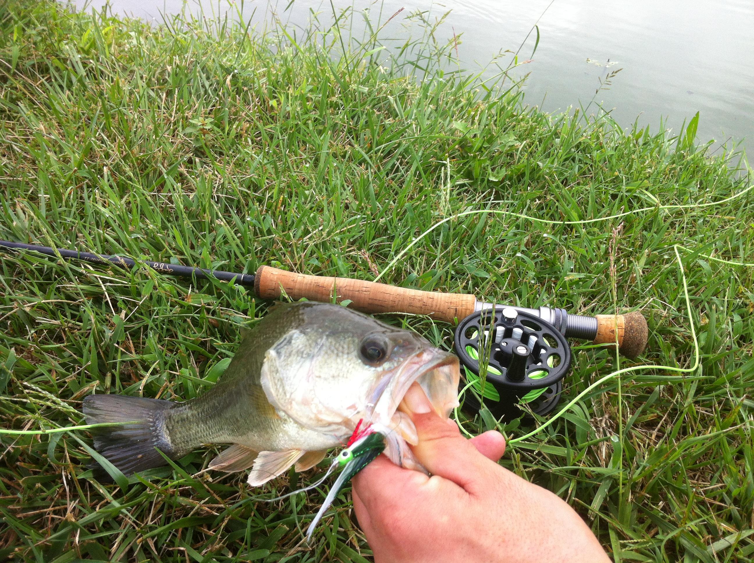 Fly fishing bucket list fishing for Fly fishing kentucky